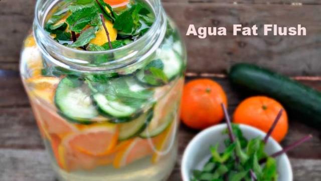 Descubre-el-agua-Fat-Flush-¡¡¡Adelgaza-tu-abdomen-en-sólo-10-días